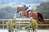 Blue Ride (PHOTODINE64 Equus Photography) Tags: cheval horse equus photodine64 horsephotography equinephotography equusphotography equestrianphotography horsephoto horsepicture horsephotographer equestrian equestrianart equestrianartist equineart photographeequestre photographieequestre
