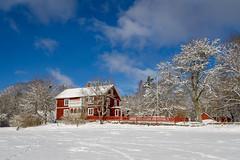 IMG_1026.jpg (psandell) Tags: snö vinter sol åslatorp skidor familjen