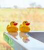 Ducks with a view (johnnewstead1) Tags: ducks rubberducks rubberduck duck bathduck yellow johnnewstead olympus em1