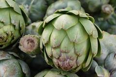 DSC_4499 (earthdog) Tags: 2018 farmersmarket needstags needstitle nikon d5600 nikond5600 18300mmf3563 campbell food edible