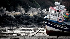 Low tide (patrick_milan) Tags: tide maree basse low boat ship peche fishing portsall