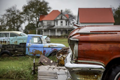 Eastern Shore of Virginia (crabsandbeer (Kevin Moore)) Tags: cars decay easternshore junkyard landscape reflection rural virginia rain ruraldecay victorian house architecture wreck rust color red shallowdof dof catalina americana roadside stilllife overcast auto graveyard automobile