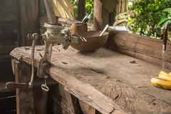 Para hacer chocolate (© fOto) Tags: cacao chocolate watsi costarica centroamérica cr claudiocigliutti lumix lightroom mirrorless m43 micro43 panasonic gf3 reserva indígenas tribu