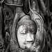 Buddha Head in Tree Roots Ayutthaya