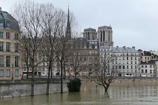 Quai de Bourbon - Paris (France)