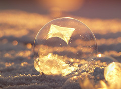 Frozen (evisdotter) Tags: frozen frusen bubble bubbla macro winter frost morning light texture bokeh crop transparence