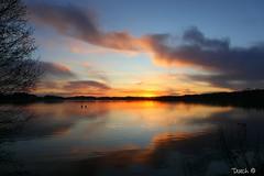 Serenity2 (Dutch in Denmark) Tags: lake sunrise serenity denmark colorful
