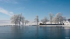 08022018-DSC_0031 (vidjanma) Tags: ardenne hiver étang neige givre arbres