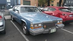 1981 Cadillac Sedan De Ville (ans.yu460) Tags: bbg188 1981 cadillac sedan deville brunswick usdm