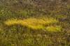 Dixon_JB_484_3998 (Joanne Bouknight) Tags: dixonwaterfowlrefuge illinois mist morning observationtower rain storm thewetlandsinstitute