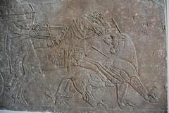 Assyrian lion hunt, Nimrud, 883-859 BCE; Pergamon Museum, Berlin (1) (Prof. Mortel) Tags: germany berlin pergamonmuseum assyrian nimrud