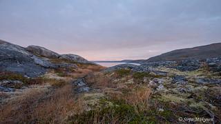 Forsøl Hammerfest 14