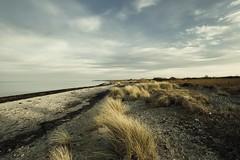 ...mein Strand... (liebeslakritze) Tags: beach strand nature natureprotectionarea ostsee balticsea schön