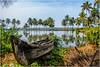 Cochin , Kumbalangi  Village ... (miriam ulivi - OFF /ON) Tags: miriamulivi nikond7200 indiadelsud cochin kochi ernakalum kumbalangivillage boat palmgrove barca palmeto laguna lagoon riflessi reflections acqua water verde green nature cielo sky
