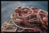 Redes de pesca (Montse Estaca) Tags: italia italy friuliveneziagiulia grado net red fishingnet reddepesca retedapesca agua acqua water rope cordel cuerda corda rojo rosso azul azzurro blue fuji fujixt1 streetphotography rivaviadandolo gorizia color