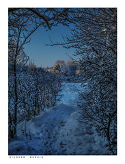 The walk to the paradise garden at sunrise. (Richard Murrin Art) Tags: castlefieldallotmentspath eynsford kent richard murrin art photography canon 5d landscape travel images building cool