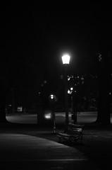 Solitario como un banco de plaza (Manutero) Tags: blackandwhite blancoynegro noche night light plaza parque park banco solo solitario farol cartel persona caminando fondo soledad dark oscuro