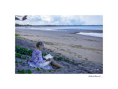 A Quiet Moment (John - TOXTETH L8) Tags: herveybay queensland australia fraserisland tide sand sharks saltwatercrocodiles children swimming surfing whales sperm humpback boats enzosonthebeach palms breeze grandchildren pointvernon book