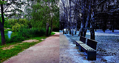 Metamorfózis (Szombathely) (milankalman) Tags: summer winter seasons green snow