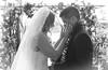 Ashley & Steffen Wedding 01:27:18 05 (JUNEAU BISCUITS) Tags: blackandwhitephotography blackandwhite wedding hawaiiphotographer hawaiianwedding kapoleigolfcourse bride groom hawaii nikon nikond810 love marriage