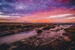 Newcastle Ocean Baths (Leighton Wallis) Tags: sony alpha a7r mirrorless ilce7r 1635mm f40 emount newcastle newcastleoceanbaths nsw newsouthwales australia sunrise dawn rock platform clouds red pink orange paintthesky