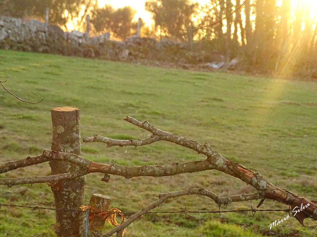 Águas Frias (Chaves) - ... o raio de sol sobre o prado ,,,