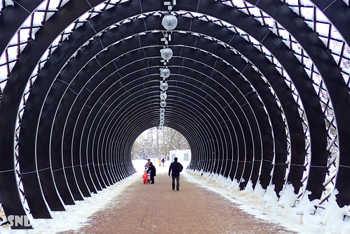 продолжение Пушкинского моста