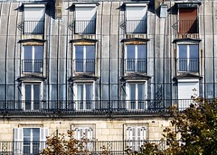 4-0-1-3 (roberke) Tags: windows ramen vensters building gebouw tree boom sunlight zonlicht outdoor architecture architectuur balkons