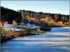 Baumes Leuchten (almresi1) Tags: ice eis lake see leinecksee alfdorf welzheim water wald wood forest trees baum winter snow schnee nature landschaft landscape sun sonnenschein