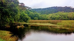 A peaceful lake hidden in São Paulo. (vieira.marcus18@yahoo.com.br) Tags: nature lake water trees landscape mobile goodvibes