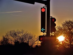 Sunset stop (thomasgorman1) Tags: canon sunset sundown arrow red green southwest nm street streetphotos trees outdoors dusk intersection stop