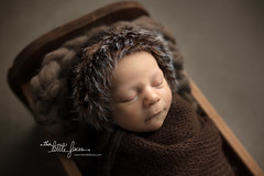 Little Eskimo (Theirlittlefaces) Tags: newbornposing newbornphotography newbornportrait newborn joannewidart theirlittlefaces
