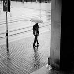 rain, rain, rain thumbnail