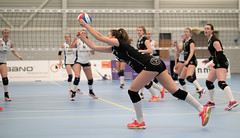 41311404 (roel.ubels) Tags: volleybal volleyball indoor sliedrecht sport coolen alterno eredivisie halve finale beker 2017 topsport debasis