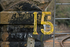15 15 vision (robmcrorie) Tags: 15 mph speed restriction cut out yellow shire brook junction nottinghamshire nikon d7500 train rail railway