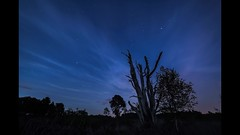 Skipwith Timelapse (Justin Cameron) Tags: timelapse night astrophotography video skipwithcommon startrails samyang14mmf28 stars starscape sky skipwith stacking