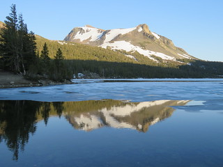 Mount Dana Reflected in Tioga Lake (Explored)