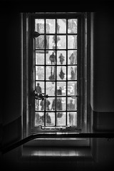 liberty window (Daz Smith) Tags: dazsmith fujixt20 fuji xt20 andwhite bath city streetphotography people candid portrait citylife thecity urban streets uk monochrome blancoynegro blackandwhite mono window liberty