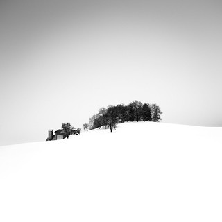 'Trees on a Hill' Ii