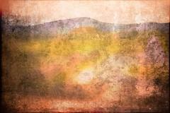olive landscape (kazimierz.pietruszewski) Tags: form composition digipaint digitalart concept graphic colorful digitalpainting landscape pictorial pictorialism