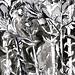 En af blomster tegninger af blomster i blyant blæk akvarel sort og hvidt kul på papir