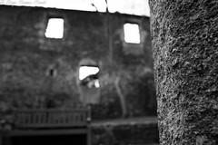 En busca de la cara (Moordenaar) Tags: ilce6000 a6000 sony sigma seda agua banco verde amarillo fuente contraste flor flores naturaleza oleiros coruña sol puerta cara face plantas arboles abandonado luz invierno ventana morado belleza beautiful hermoso foto diego campos ondas bokeh desenfoque piedra casa