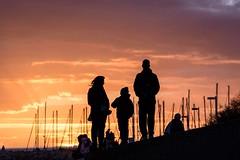 Family Sunset (NathalieSt) Tags: coucherdesoleil europe france hérault lagrandemotte languedocroussillon occitanie nature nikon nikond750 nikonpassion nikonphotography sunset