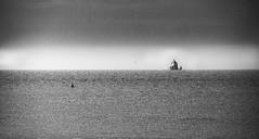 Ship of Dreams (Late Developer) Tags: ship sailing barge silouhette blackandwhite