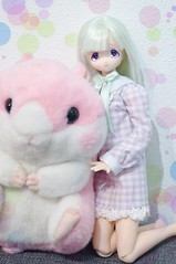 New Outfit (vanyrei) Tags: azone pastelcolor color pastel outfit minami amuse kawaii