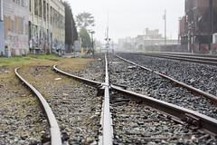 siding (eb78) Tags: ca california eastbay ue urbex urbanexploration berkeley rails railroad traintracks spur industry industrial