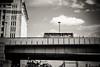 NFX3881 (Toonfish 67) Tags: london londoncity nikond700 nikon d700 streetphotography blackwhite underground camdentown camdenlock saintpancras towerbridge londoneye toweroflondon