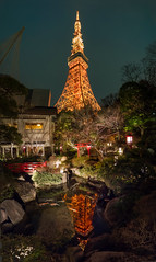 Tokyo Tower Reflection (Stuck in Customs) Tags: tokyo japan treyratcliff stuckincustoms stuckincustomscom tower coy fish fishy fishie tree pond food restaurant travel night reflection reflections light dark