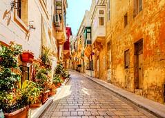 Streets of Valletta Malta (Daveyal_photostream) Tags: nikon nikor plant windows doors texture coblestone architecture buildings sky meandmygear mygearandme mycamerabag d600 beautiful photoshop photomatix lightroom colorful beauty building road street malta valletta sunny bright redsandgreens perspective