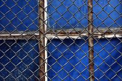 The Caged Blue (gripspix (OFF)) Tags: 20180207 rottweil germany deutschland badenwürttemberg endétail detail decay zerfall window fenster vergittert barred blue blau rust rost meshwire maschendraht